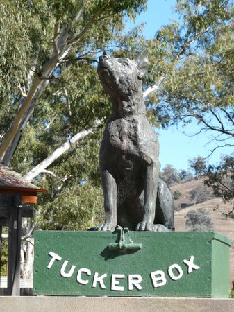 Gundagai, Australia: Dog on the tuker Box
