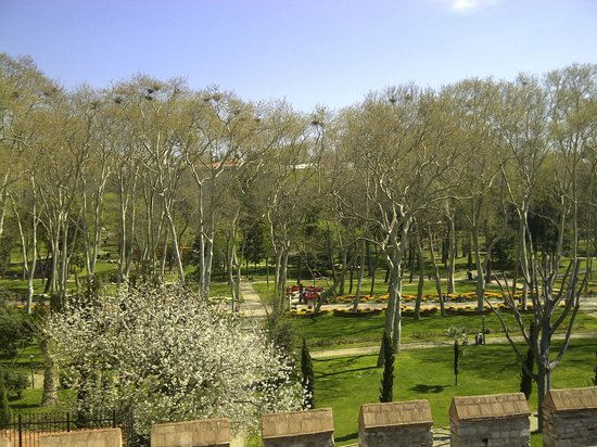 Sirkeci Konak Hotel: View of the Top Kapi park from our room. Lots of stork nests!