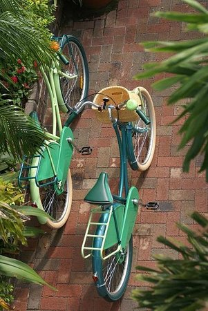 Watergarden Inn at the Bay : Enjoy our Inn bikes