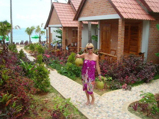 Phuong Binh House: Fresh Coconuts from the tree by our room!
