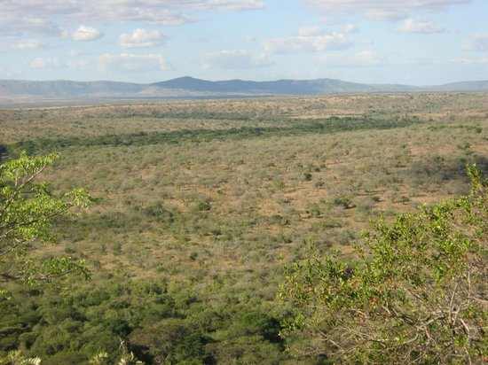 Hluhluwe, Afrika Selatan: Looking towards the Lebombo Range of mountains