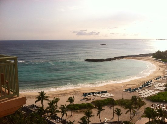 The Cove Atlantis: Our view