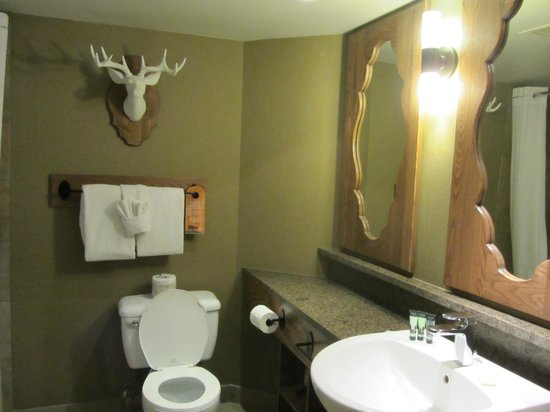 Banff Caribou Lodge &amp; Spa: Bathroom