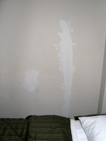 Quality Inn Heart of Savannah: plastered spots not painted