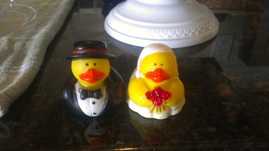 Starfish Manor Oceanfront Hotel: Wedding rubber ducks that the hotel provided! So cute!