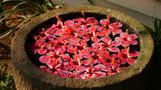 Kumarakom Lake Resort: Lovely flower arrangements in anything that holds water.