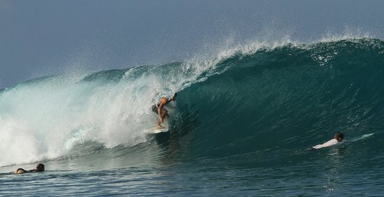Ocean Isle Beach, Caroline du Nord : Michael Powell in Indonesia. 