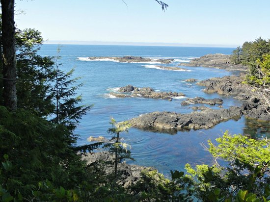 Waters Edge Resort at Pacific Rim: View from The Wild Pacific Trail