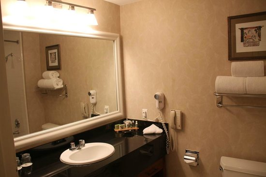 The Woodlands Resort & Conference Center: Bathroom (Room near swimming pool)
