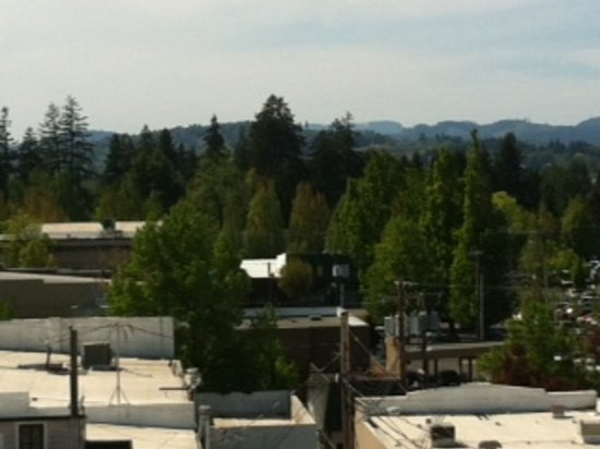 McMinnville, Орегон: View from the top!