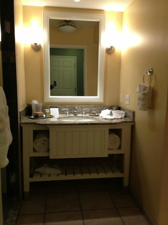 Watkins Glen Harbor Hotel : Spacious Bathroom