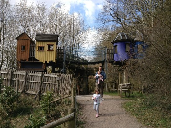 Coleford, UK: Treetop houses