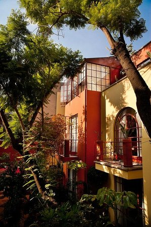 Photo of The Red Tree House Mexico City