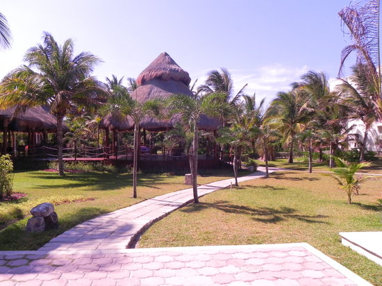 Akumal Beach Resort: Que de la belle nature...