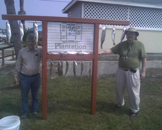 Plantation Suites: We love Plantion's Fish Cleaning / Photo Opt Station