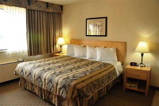 BEST WESTERN PLUS Chelsea Inn: Guest Room