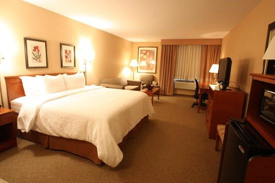 Best Western Plus CottonTree Inn: King Guest Room