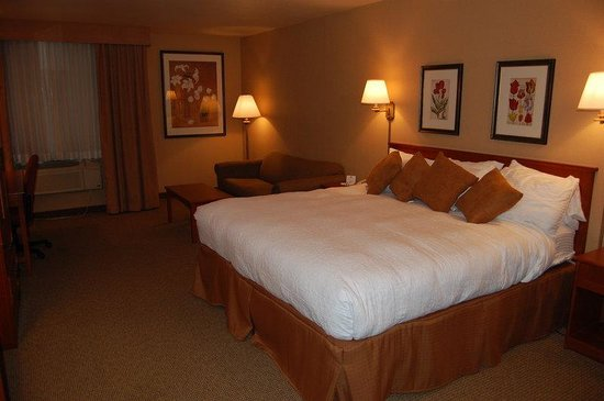 Best Western Plus CottonTree Inn: King Bed