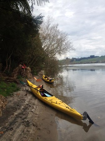 Cambridge, New Zealand: Kayaks