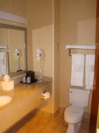 BEST WESTERN PLUS Denton Inn &amp; Suites: Guest Bathroom
