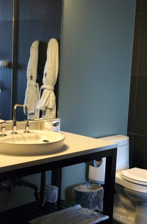 Iron Horse Hotel: standard room bathroom