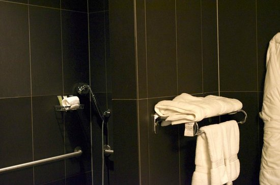 Iron Horse Hotel: Roll in shower in accessible bathroom