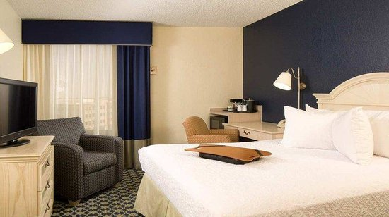 Hampton Inn Orlando-S. Of Universal Studios: Single Queen Guestroom