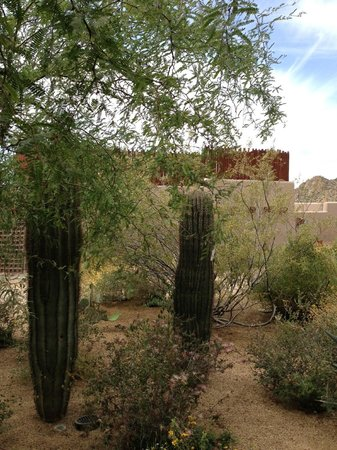 Four Seasons Resort Scottsdale at Troon North: Rear of pool bar from room, a bit noisy and smelly