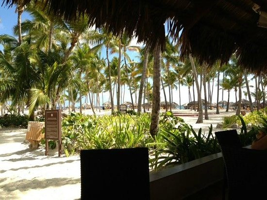 Catalonia Bavaro Beach, Casino &amp; Golf Resort: View from Beach Restaurant
