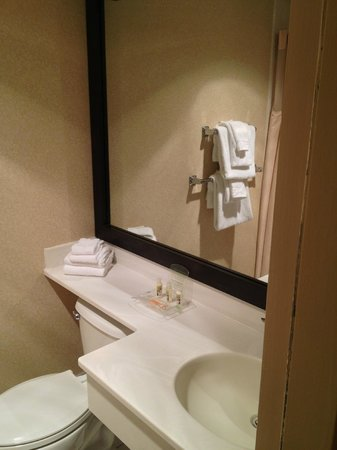 Beverly Garland's Holiday Inn: Bathroom
