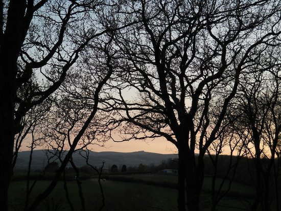 Chudleigh, UK: Evening view from balcony