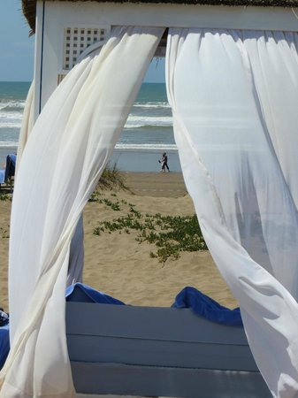 Mazagan Beach Resort: Four poster overlooking the Atlantic