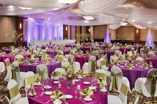 Doubletree by Hilton Hotel Minneapolis - Park Place: Park Ballroom