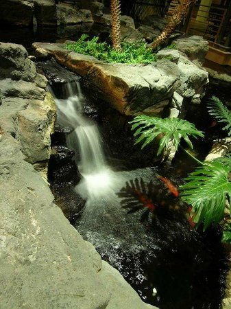 Embassy Suites North Shore / Deerfield: Atrium Waterfall