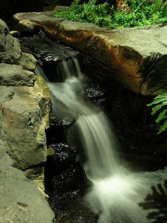 Embassy Suites North Shore / Deerfield: Waterfall in the Atrium