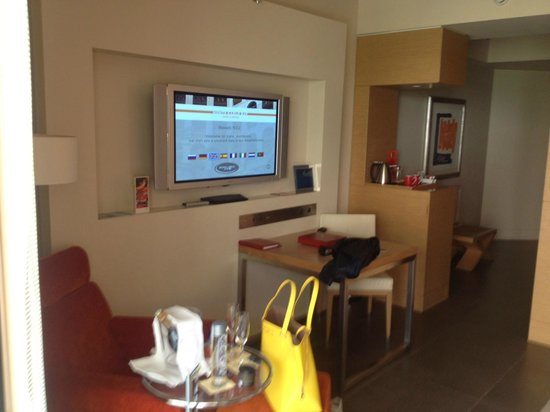 Monte-Carlo Bay Hotel & Resort : tv area