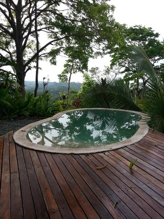 Carate, Costa Rica: Private dipping pool on the Villas deck