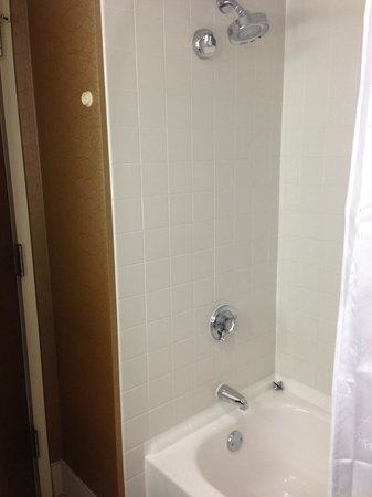 Sheraton Imperial Hotel and Convention Center: Tub / Shower