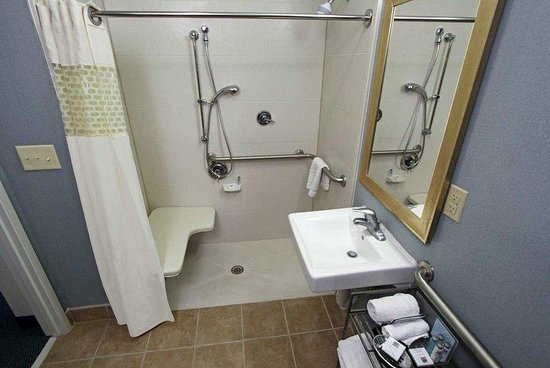 Hampton Inn Morehead City: Guest Accessible Bathroom