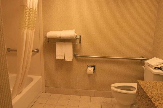Hampton Inn Los Angeles / Arcadia / Pasadena: Accessible Bathroom