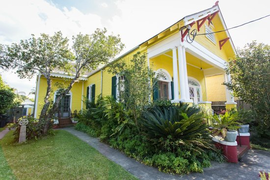 Auld Sweet Olive Bed and Breakfast: Auld Sweet Olive B&amp;B in New Orleans