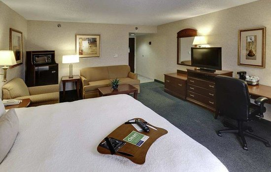 Hampton Inn Buffalo Airport: King Whirlpool Room