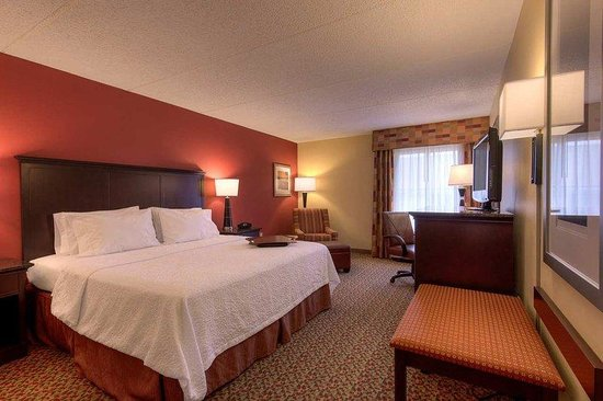 Hampton Inn Mobile I-10/Bellingrath Gardens: Standard King Room