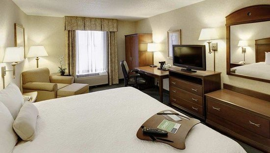 Hampton Inn Buffalo Airport: King Guest Room