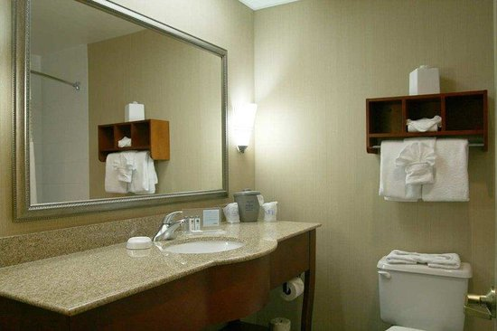 Hampton Inn & Suites Asheville Airport: Standard King Room