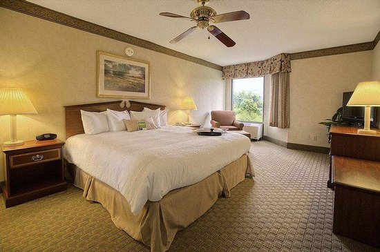 Hampton Inn & Suites Asheville Airport: King Whirlpool Suite