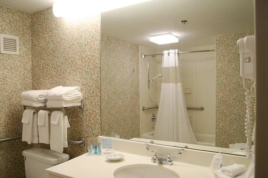 Hampton Inn Danville: King Accessible Bathroom