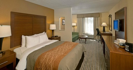 Comfort Inn at the Park: King Bed Guest Room