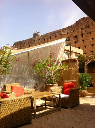 Riad Carina: Roof terrace