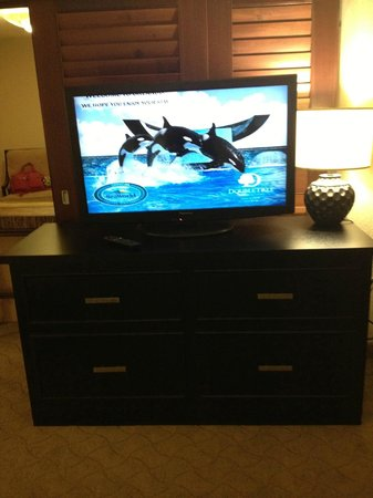 Doubletree by Hilton Orlando at SeaWorld: TV